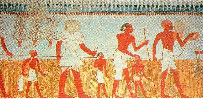 agriculture in ancient times